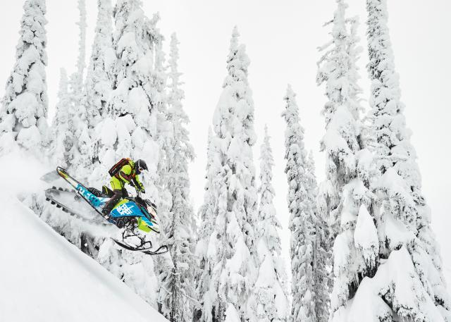 2018 Ski-Doo Freeride 154 850 E-TEC ES PowderMax 3.0 S_LEV in Woodinville, Washington
