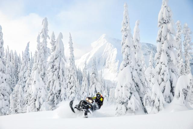 2018 Ski-Doo Summit SP 165 850 E-TEC SS, PowderMax Light 2.5 in Island Park, Idaho