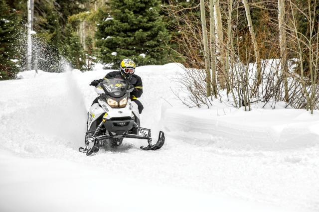 2018 Ski-Doo MXZ TNT 129 600 HO E-TEC ES Ripsaw 1.25 S_LEV in Toronto, South Dakota