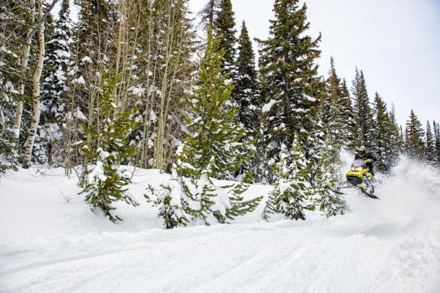 2018 Ski-Doo MXZ X 850 E-TEC Ripsaw 1.25 in Wisconsin Rapids, Wisconsin