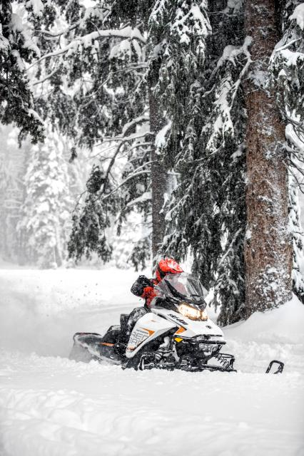 2018 Ski-Doo Renegade Adrenaline 1200 4-TEC in Ironwood, Michigan
