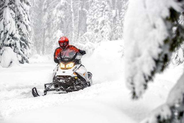 2018 Ski-Doo Renegade Adrenaline 850 E-TEC in Hillman, Michigan
