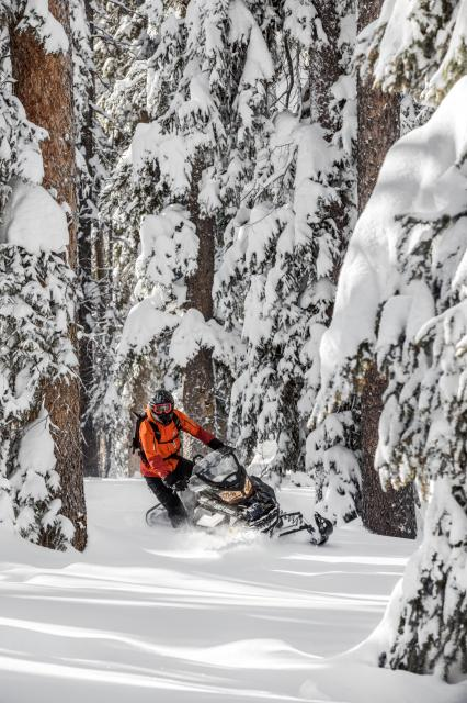 2018 Ski-Doo Renegade Backcountry 600 H.O. E-TEC in Springville, Utah