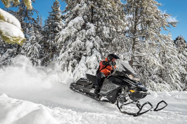 2018 Ski-Doo Renegade Backcountry 600 H.O. E-TEC in Omaha, Nebraska