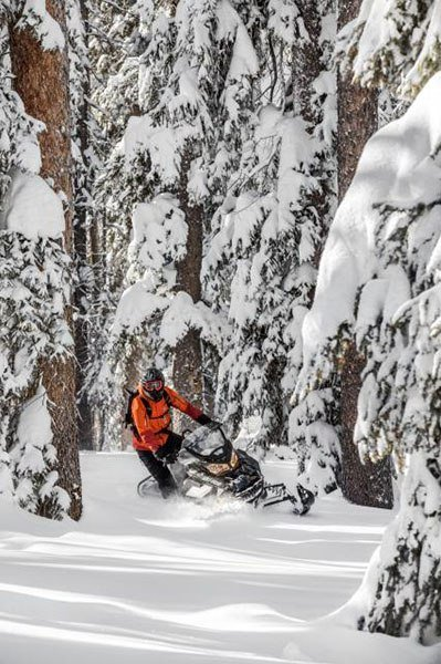 2018 Ski-Doo Renegade Backcountry 850 E-TEC in Fond Du Lac, Wisconsin - Photo 2