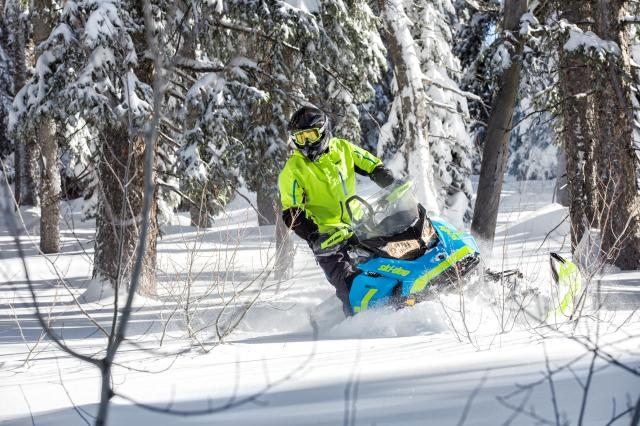 2018 Ski-Doo Renegade Backcountry X 850 E-TEC ES PowderMax 2.0 in Inver Grove Heights, Minnesota