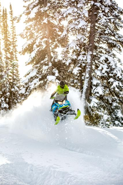 2018 Ski-Doo Renegade Backcountry X 850 E-TEC ES PowderMax 2.0 in Wenatchee, Washington