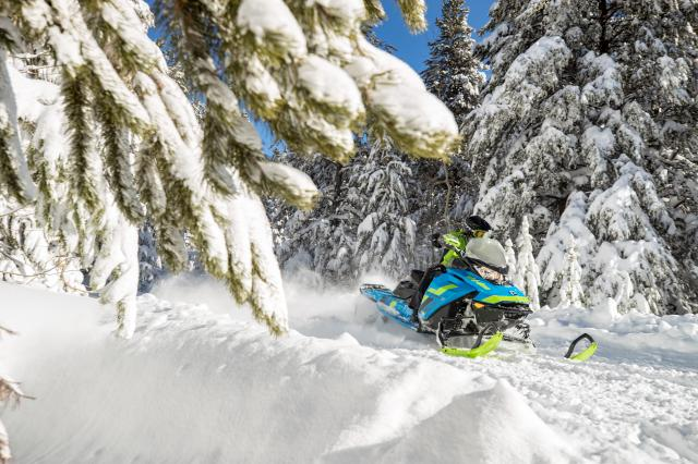 2018 Ski-Doo Renegade Backcountry X 850 E-TEC ES PowderMax 2.0 in Unity, Maine