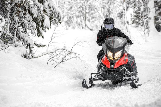 2018 Ski-Doo Renegade Enduro 600 HO E-TEC ES in Presque Isle, Maine