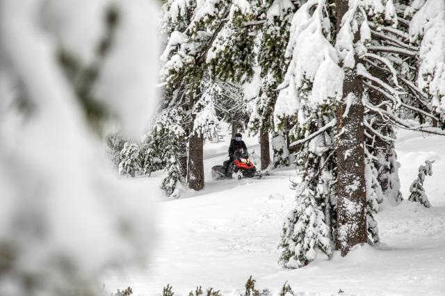2018 Ski-Doo Renegade Enduro 600 HO E-TEC ES in Speculator, New York
