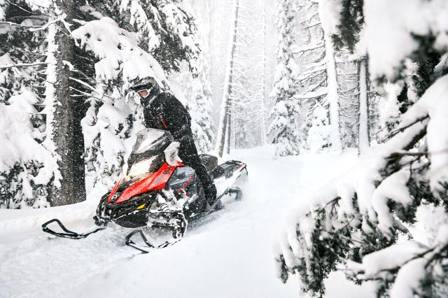 2018 Ski-Doo Renegade Enduro 800R E-TEC ES in Speculator, New York
