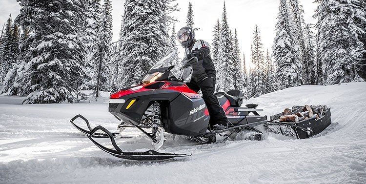 2018 Ski-Doo Expedition SWT in Fond Du Lac, Wisconsin