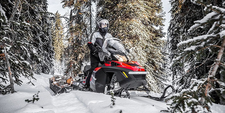 2018 Ski-Doo Expedition SWT in Butte, Montana