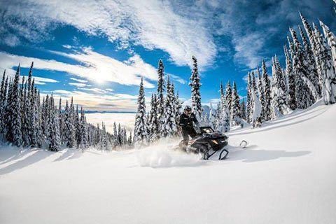 2018 Ski-Doo Expedition Xtreme 800R E-TEC in Wenatchee, Washington
