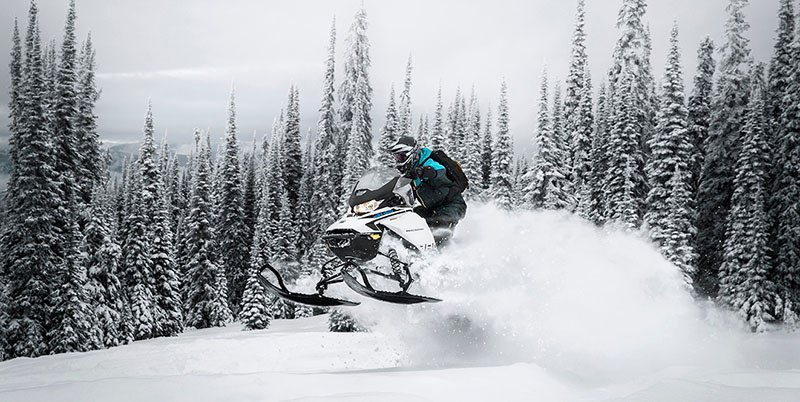 2019 Ski-Doo Backcountry X 850 E-TEC ES Powder Max 2.0 in Hillman, Michigan