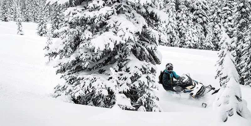 2019 Ski-Doo Backcountry X 850 E-TEC SS Powder Max 2.0 in Detroit Lakes, Minnesota