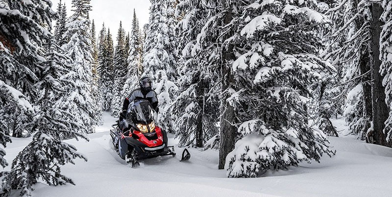2019 Ski-Doo Expedition SE 600 H.O. E-TEC in Island Park, Idaho - Photo 2