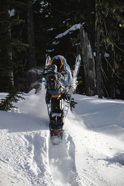 2022 Ski-Doo Backcountry X 850 E-TEC ES PowderMax 2.0 w/ Premium Color Display in Hillman, Michigan - Photo 10