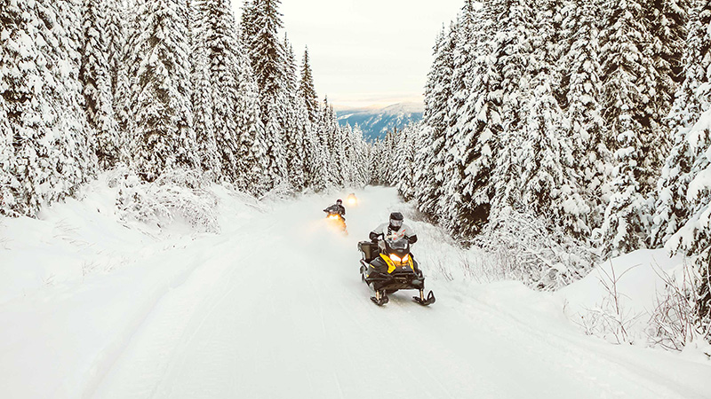 2022 Ski-Doo Tundra Sport 600 ACE ES Cobra 1.6 in Woodinville, Washington - Photo 3
