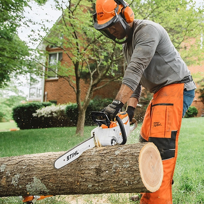 Stihl MSA 220 C-B Chainsaw in Philipsburg, Montana - Photo 3