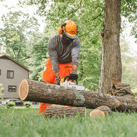 Stihl MSA 220 C-B Chainsaw in Philipsburg, Montana - Photo 5