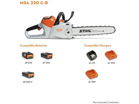 Stihl MSA 220 C-B 14 in. in Ogallala, Nebraska - Photo 2