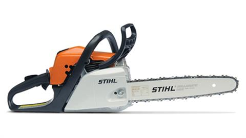 Stihl MS 171 in Homer, Alaska