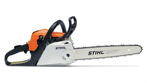 Stihl MS 181 C-BE in Homer, Alaska
