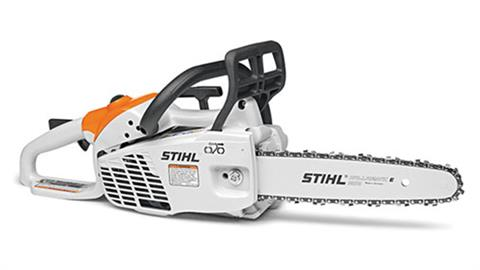 Stihl MS 194 C-E in Homer, Alaska
