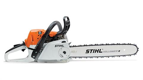 Stihl MS 251 C-BE in Homer, Alaska