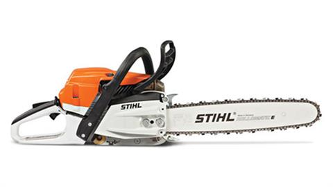 Stihl MS 261 in Homer, Alaska