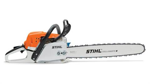 Stihl MS 291 in Homer, Alaska