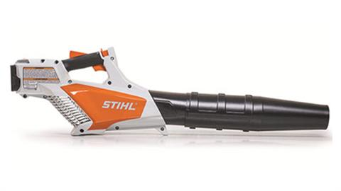 Stihl BGA 57 in Mio, Michigan