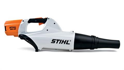 Stihl BGA 85 in Mio, Michigan