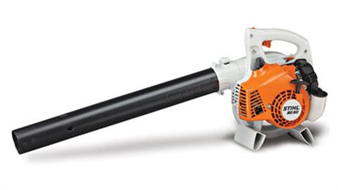 Stihl BG 50 in Greenville, North Carolina
