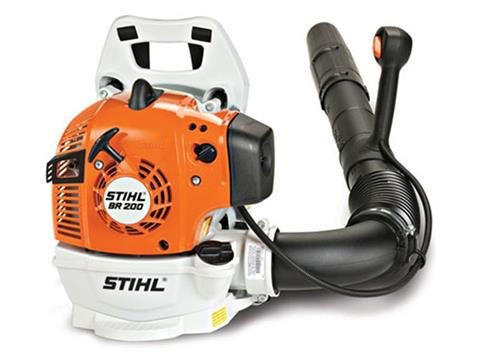 Stihl BR 200 in Mio, Michigan
