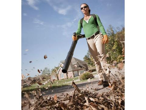Stihl BR 200 in Purvis, Mississippi - Photo 4