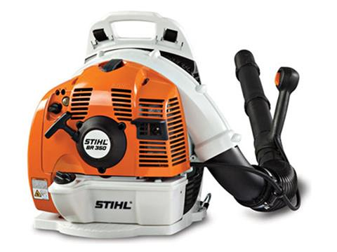 Stihl BR 350 in Greenville, North Carolina