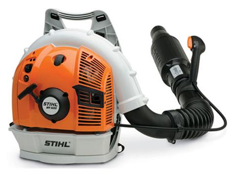 Stihl BR 500 in Mio, Michigan