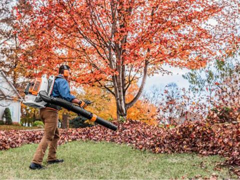 Stihl BR 800 C-E MAGNUM® in Ruckersville, Virginia - Photo 4