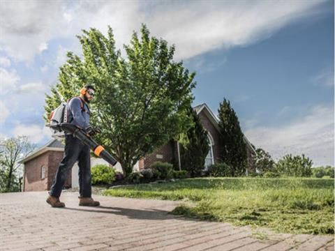 Stihl BR 800 C-E MAGNUM® in Ruckersville, Virginia - Photo 5