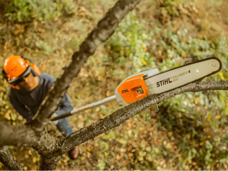 Stihl HTA 65 10 in. in Philipsburg, Montana - Photo 4
