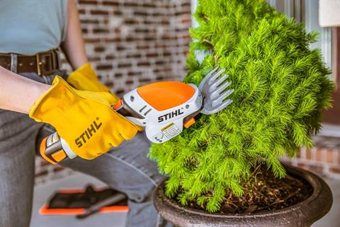 Stihl HSA 25 in Fairbanks, Alaska - Photo 4