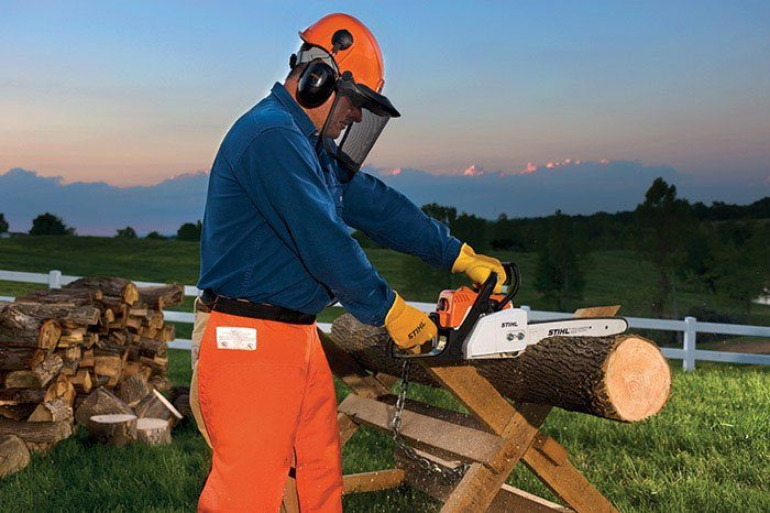 Stihl MS 170 Chainsaw in Calmar, Iowa - Photo 2