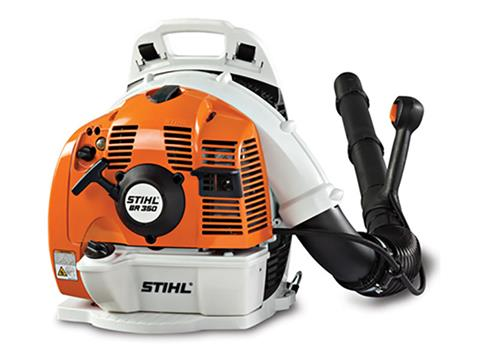 Stihl BR 350 Blower in Bingen, Washington