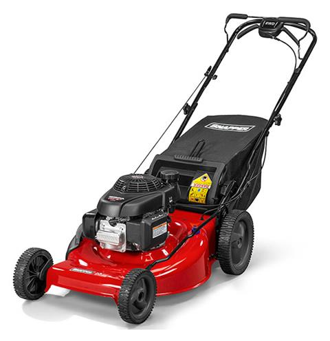 2018 Snapper SP Series Self Propelled Lawn Mowers (SP110) in Fond Du Lac, Wisconsin
