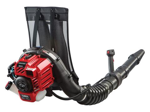 2018 Snapper Gas Powered Backpack Leaf Blower (BB44) in Fond Du Lac, Wisconsin