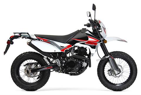 2019 SSR Motorsports XF250 Dual Sport in Mio, Michigan