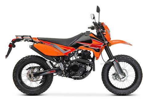 2021 SSR Motorsports XF250 Dual Sport in Mio, Michigan