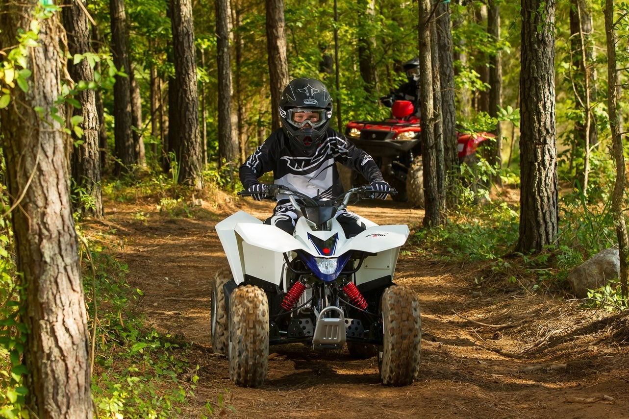 2016 Suzuki QuadSport Z90 in Albemarle, North Carolina